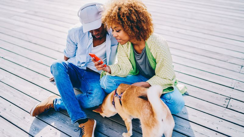 Use Your Social Network to Help Pets